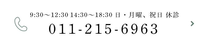 011-215-6963